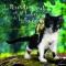 """Couverture du livre : """"Le petit chat perdu et le lutin de la forêt"""""""