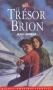"""Couverture du livre : """"Le trésor de Brion"""""""