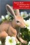 """Couverture du livre : """"Les tribulations d'un lapin en Laponie"""""""