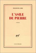 """Couverture du livre : """"L'asile de pierre"""""""