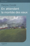 """Couverture du livre : """"En attendant la montée des eaux"""""""