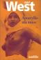 """Couverture du livre : """"Amaryllis ma muse"""""""