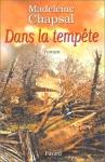 """Couverture du livre : """"Dans la tempête"""""""