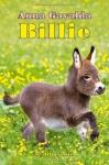 """Couverture du livre : """"Billie"""""""