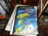 """Couverture du livre : """"L'héritage de Laura Abrigore"""""""