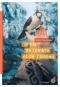 """Couverture du livre : """"Le fils de l'ombre et de l'oiseau"""""""