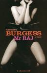 """Couverture du livre : """"Mister Raj"""""""
