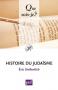 """Couverture du livre : """"Histoire du judaïsme"""""""