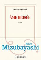 """Couverture du livre : """"Âme brisée"""""""