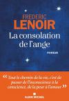 """Couverture du livre : """"La consolation de l'ange"""""""