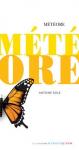 """Couverture du livre : """"Météore"""""""